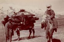 Қазақ тарихындағы жануарлар культі