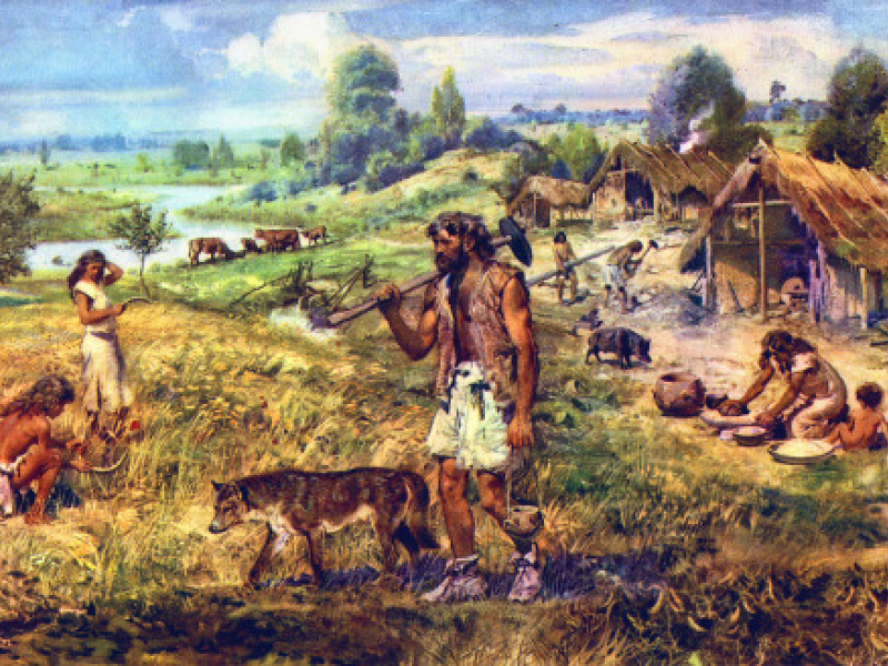 The Evolution of Social Relations during the Stone Age
